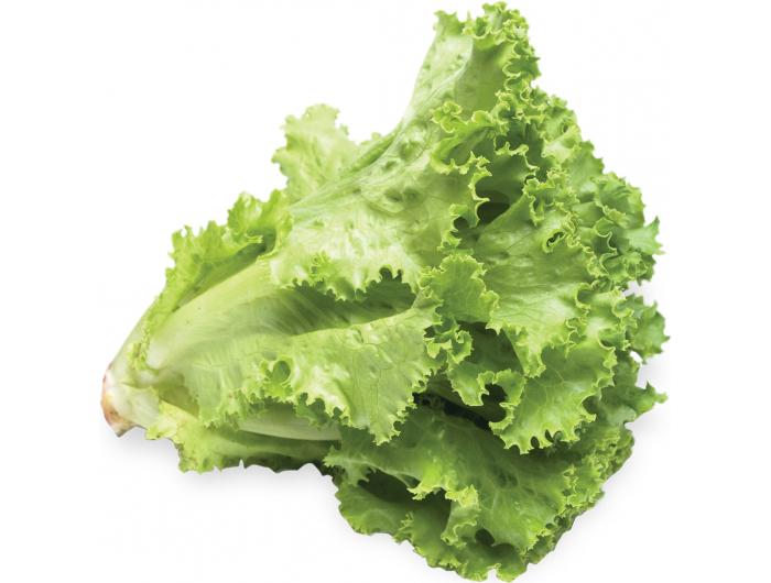 Kristalka Salata 1 kom