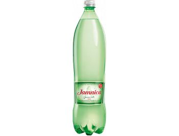 Jamnica Gazirana prirodna mineralna voda 1 l