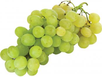 Bijelo grožđe stolno 1 kg