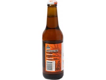 Pale Ale Svijetlo pivo Zmajska pivovara 0,33 l
