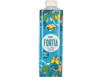 Vindija 'z bregov Fortia jogurt natur 1 kg